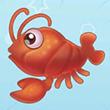 摩尔庄园小龙虾