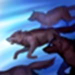 英雄联盟手游群体狩猎符文怎么样 LOL手游群体狩猎符文介绍