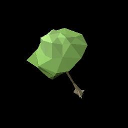 艾兰岛橡胶树