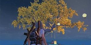 和平精英中秋模式玩法介绍 骑着月兔喷气车冲上月球吧!