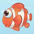 摩尔庄园小丑鱼