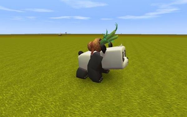 迷你世界熊猫驯服方法