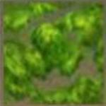 迷你世界苔藓有什么用 苔藓怎么获得