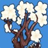摩尔庄园植物樱花树怎么获得 摩尔庄园樱花树获得方法