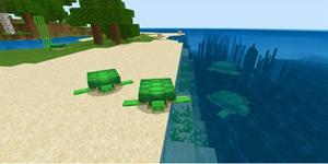 我的世界海龟生产基地教程 收获一群小可爱
