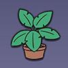 加查生活室内植物